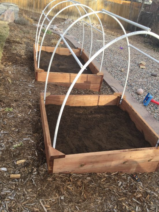 dirt for raised beds