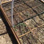 Garden log and drip irrigation tips