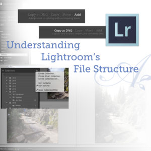 Understanding Lightroom's File Structure